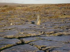 This small stone is an outlier often overlooked at Poulnabrone in the Burren and has a strong energy vortex round it. www,spirit-of-burren.com Hidden Places, City Photo, Places To Visit, Spirit, Strong, Tours