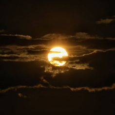 Ya llegó... #madrid #places#lugares #people#gente#urbanscenes#escenasurbanas#Color #sun #sol #spring #primavera #HuaweiP20Pro @huaweimobileesp #sunset #debod