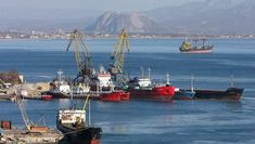 Планета Земля и Человек: В приморской бухте нашли новое загрязнение