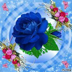 To my dear Joe❤,Love Beautiful Flowers Wallpapers, Beautiful Gif, Beautiful Roses, Good Night Messages, Good Night Wishes, Flowers Gif, Pretty Flowers, Good Morning Roses, Love Rose