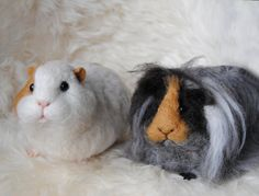 Custom needle felted guinea pigs, made to order. Can't do any needle felting myself but these are pretty good!
