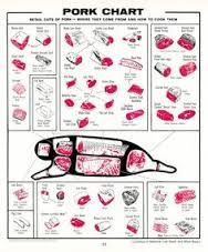 Image result for diagram of parts of a pig for meat