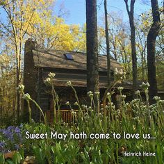 """Sweet May hath come to love us, Flowers, trees, their blossoms don; And through the blue heavens above us The very clouds move on."" ―Heinrich Heine  Photo: Cabin in May sunshine, Brown County, Indiana. 2015."