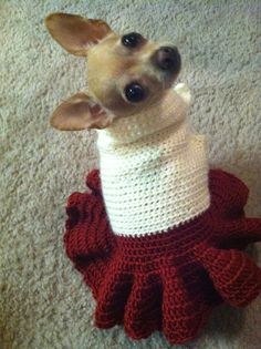 Crochet dog dress with princess skirt by CobosCloset on Etsy, $20.00 Wonder if it comes in different sizes.
