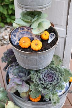 Beautiful Fall Kitchen Garden from Finding Home!