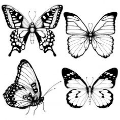 Discover thousands of Premium vectors available in AI and EPS formats Papillon Butterfly, Butterfly Hand Tattoo, Butterfly Sketch, Butterfly Images, Butterfly Tattoo Designs, Blue Butterfly, Butterfly Black And White, Art Drawings Sketches, Tattoo Drawings