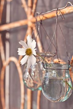 Hey, I found this really awesome Etsy listing at https://www.etsy.com/listing/169254946/white-flower-in-a-jar-wall-decor-fine
