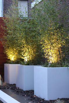 Bamboo flower boxes: modern garden by Guy Wolfs Hoveniersbedrijf Back Gardens, Outdoor Gardens, Modern Gardens, Bamboo Planter, Backyard Ideas For Small Yards, Backyard Designs, Outdoor Landscaping, Landscape Lighting, Dream Garden