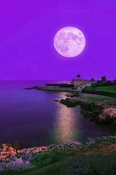 Beautiful Moon, Beautiful World, Beautiful Images, Simply Beautiful, Moon Photos, Moon Pictures, Shoot The Moon, Blue Moon, Moon Sea