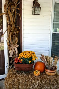 hay bale, pumpkins, mums, Indian corn and corn stalks = the perfect fall porch!