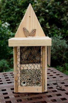 Bee & Bee Bug Box