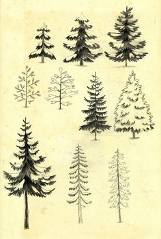 Trees art pattern
