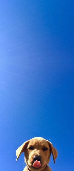 What a beautiful blue sky