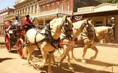 As you enter Old Sacramento's 28-acre town of historic buildings that were constructed in the early 1800s, you'll step back in time to the California Gold Rush era.