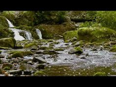 Relaxing Waterfall Nature Scene With Nature's Relaxing Sounds By ScenicVideos - http://www.imagerelaxationvideos.com/relaxing-waterfall-nature-scene-with-natures-relaxing-sounds-by-scenicvideos/