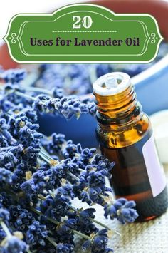 20 Uses for Lavender Oil - good stuff! just put some on my cold sore lets see if it works!