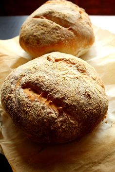 Basic No Knead Bread