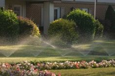 Installing landscape irrigation system can be a good idea. Landscape irrigation is a watering system that is used to maintain gardens, and custom landscapes. Water Sprinkler System, Best Sprinkler, Multimedia, Sprinkler Installation, Lawn Sprinklers, Lawn Maintenance, Green Lawn, Green Grass, Lawn Care