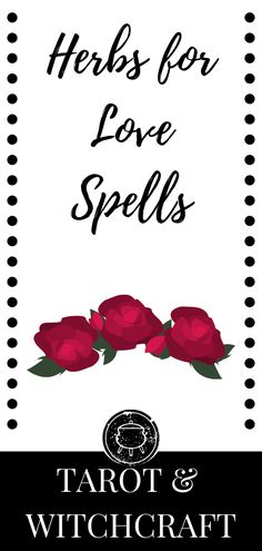 witchcraft botanicals beginners favorite basics spells herbs tarot list this love for use of my Herbs for love Witchcraft Basics Tarot Witchcraft Herbs for love spells This is a list of myYou can find Spells witchcraft beginners and more on our website Witchcraft Herbs, Witchcraft Spells For Beginners, Wicca For Beginners, Tarot Cards For Beginners, Magick, Spelling Online, Traditional Witchcraft, Love Spell Caster, Strong Love