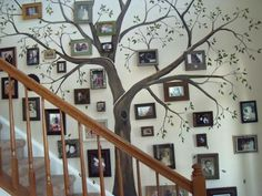 Family Tree Wall/. How cool is this?