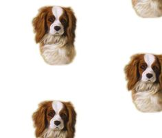 Colorful fabrics digitally printed by Spoonflower - Cavalier King Charles spaniel dog Dani-ed King Charles Spaniel, Cavalier King Charles, Spoonflower Fabric, Spaniel Dog, Custom Fabric, Fabrics, Wallpapers, Colorful, Printed