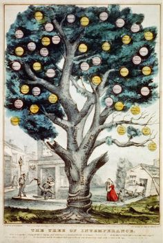 The tree of intemperance