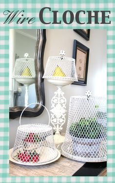 Chicken Wire~like Cloche