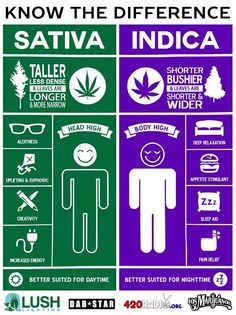 Know the Difference #Cannabis