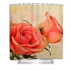 Peaches And Cream shower curtain - photography by Judy Vincent. flowers, roses, peach