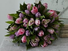 Sherbet Tulip bouquet from Jane Packer Delivered