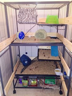 This is a life saver if you have small animals such as a Chinchillas, Guinea pigs, Rats, Hamsters and so on. This little trick saves money. Animals always kick their bedding out out out of their cage, now they can't. Plus it's a great thing for them to chew, just make sure the wood is NOT treated, painted/stained as this can be fatal for your pet. I used pine, lasts up to 4-7 months depending on how many animals and if they like to chew. Hope this helps :)