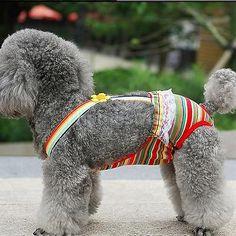 Female-Pet-Dog-Colorful-Striped-Suspender-Sanitary-Diaper-Briefs-Size-XXS-XL