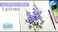 Watercolor Wednesday : Lupines/ Step by Step tutorial for Beginners Watercolor Painting Techniques, Watercolour Tutorials, Watercolor Paintings, Floral Paintings, Painting Tutorials, Watercolors, Lupine Flowers, Step By Step Watercolor, Floral Artwork