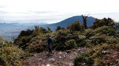 Top Singgalang 2877 mtrs