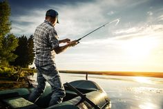Learn some Basic Guides on Bass Fishing - Fishing Tips