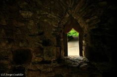 Abadía de Tintern, ventana