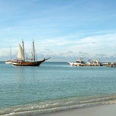 As águas cristalinas e azuis da calma praia de #PalmBeach em #Aruba - - - - - - - - - - - - - - - -  @holidayinnaruba @holidayinn #HolidayInnAruba #holidayinn #JoyofTravel #holidayinnresort #OneHappyIsland #arubablue #arubabeach #arubalife #arubabonbini #arubaisland #arubatourism #arubaonehappyisland #FelizEmAruba #DescubreAruba #ilovearuba #aftcomunicacao #blogueirorbbv #travel #aruba_br #ComerDormirViajar #CDVTripAruba #CDVTripHIAruba #MiDestinoCopa #FlyCopa #caribe #caribbean