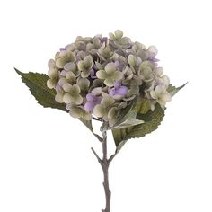 Amazing Plastic flowers and plants. Browse our extensive collection and choose your plastic flower or plant. Shabby Chic Homes, Shabby Chic Style, Plastic Flowers, Plant Decor, Flower Decorations, Hydrangea, Pink And Green, Plants, The 100