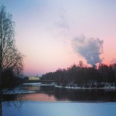 Pink winter afternoon