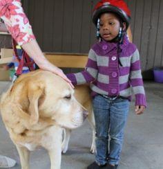 Pet Partners Comfort Kids Under Stress -- The Skanner