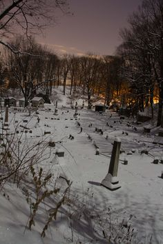 Mt. Hope Cemetery in the Moonlight, Rochester