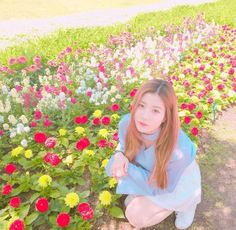 3 In One, One Pic, Yuri, Sakura Miyawaki, Fandom, Japanese Girl Group, Kawaii Girl, K Idols, Kpop Girls