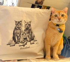 Jack and his tote