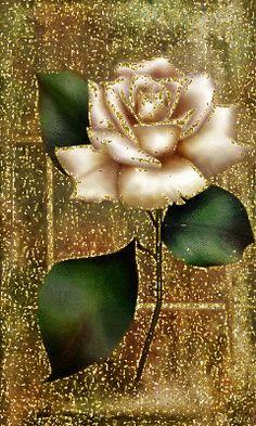 Роза Beautiful Flowers Images, Beautiful Flowers Wallpapers, Beautiful Gif, Flower Images, Amazing Flowers, Beautiful Roses, Flowers Gif, Glitter Flowers, Love Flowers