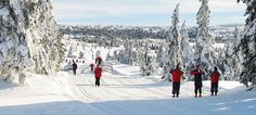 Next stopp, Sjusjøen. This place has the best crosscountrey skiing in the world.