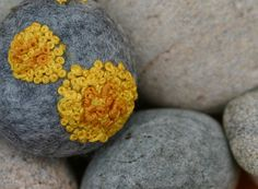 This is cute - this etsy shop is doing a series of accessories for scientists :) Common orange lichen on a grey wool pebble - Xanthoria parietina brooch. via Etsy. Growth And Decay, Science Crafts, Textiles, Yarn Bombing, Felt Decorations, Felt Ball, Cotton Velvet, Crochet Motif, Felt Flowers