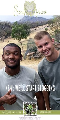 Volunteer Abroad, Africa Travel, How To Start A Blog, South Africa, Wildlife, African, Volunteers, Dutch, Blogging