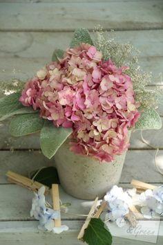 Hortensien Dekoration Hydrangea decoration