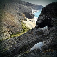 Cabo de Gata | Almería | Spain | One of the 7 natural wonders of Spain