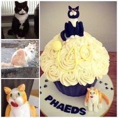 Giant cupcake cake cats